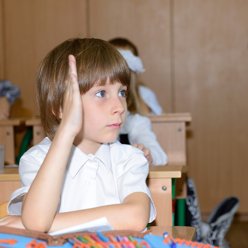 Portrait of schoolboy looking at camera at workplace with anothe